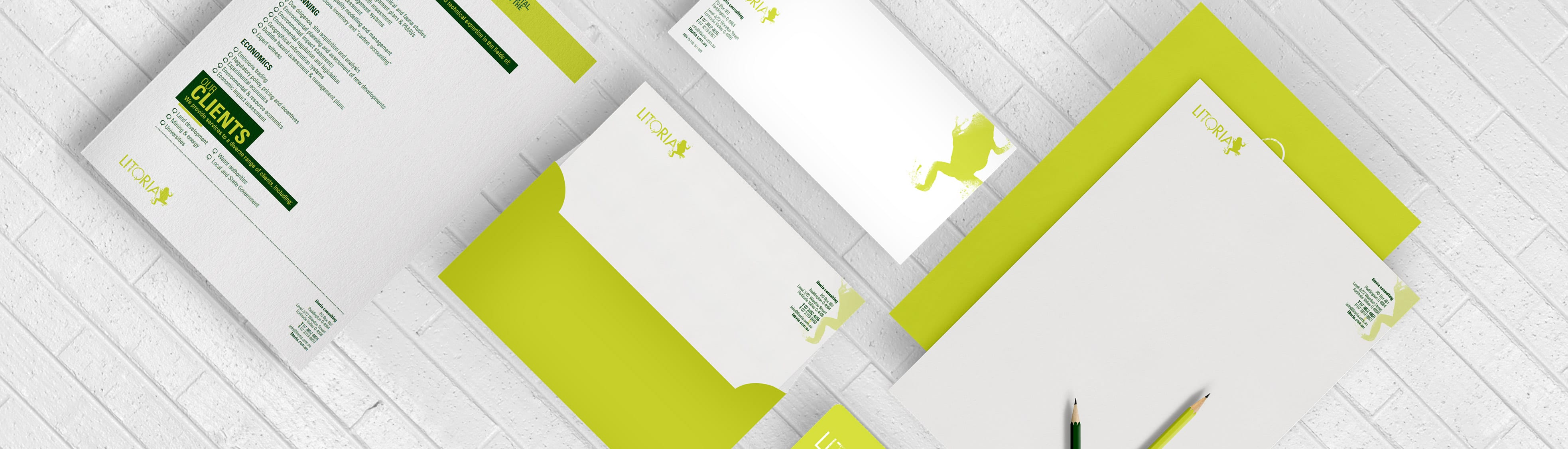 Litoria Brand Development